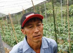 Plástico Moderno, Sérgio Mitsuaki Maejima, Proprietário do sítio, Plasticultura - Plásticos propõem aos agricultores explorar seus benefícios além do simples abrigo do tipo guarda-chuva